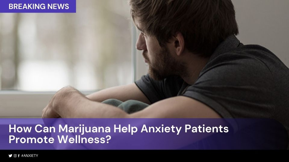 How Can Marijuana Help Anxiety Patients Promote Wellness_