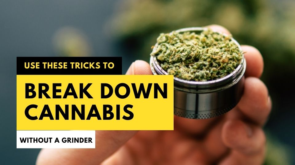 Use These Tricks to Break Down Cannabis Without a Grinder